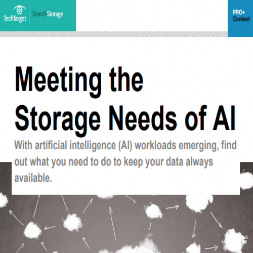 Meeting the Storage Needs of AI The Future of Storage